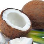 ココナッツオイル が良いとされる訳