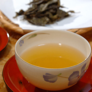 阿波晩茶1